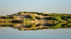 Dune_sul_fiume_Coghinas_copia.jpg