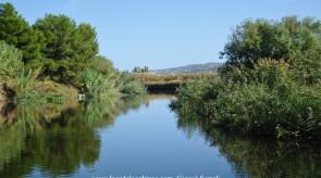 Paesaggio_fluviale_1_copia.jpg