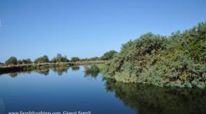 Paesaggio_fluviale_2_copia.jpg